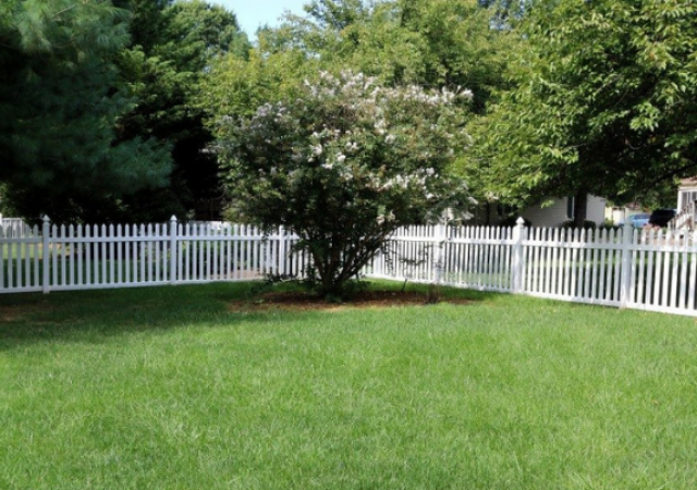 white-fence-trend