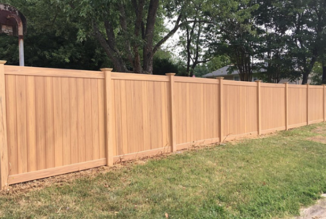 Insider Look: Ranking Backyard Fencing Options