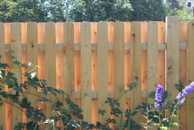 Shadowbox wood fence in backyard